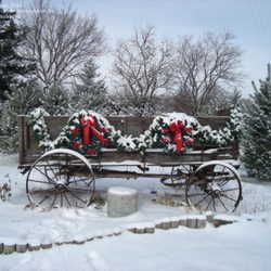 Country Christmas - I hadn't thought of decorating our wagon for Christmas...cute idea!  (of course, minus the snow here)