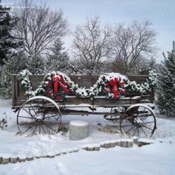 country christmas...Holiday, Winter Wonderland Decor, Christmas Wagon, Cute Ideas, Old Wagon, Christmas Decor, Country Christmas Trees, Christmas Ideas, Country Wagon