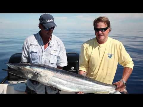 107 best images about caribbean fishing deep sea fishing for Fishing in bermuda
