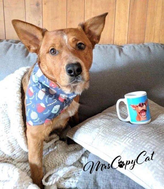 Red Heeler Mug Funny Dog Cup Coffee Mug Dog Mom Dog Dad Heeler