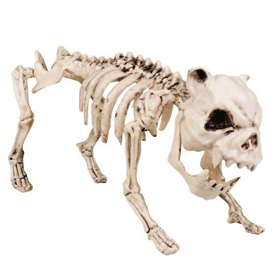 Halloween Hond Skelet Decoratie - 42cm