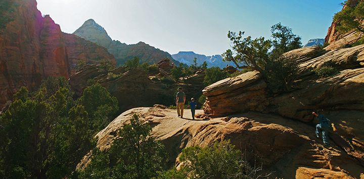 http://bestfriends.org/Zion%20National%20Park%20is%20only%2020%20miles%20from%20Best%20Friends.