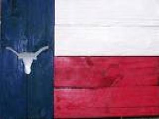 american texas flag