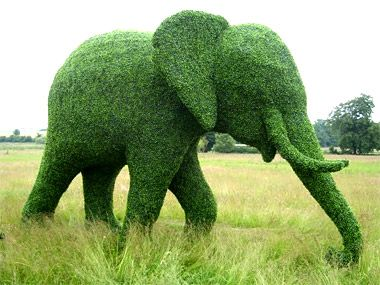 You Can Make What Out of Foliage? Part 2 Amazing Green Animals ...
