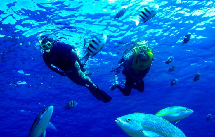 Snorkeling In Amber Cove Amber Cove Dominican Republic