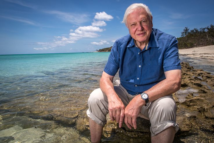 Go diving like Attenborough from three of the Southern Great Barrier Reef's islands – locations that inspired his latest Great Barrier Reef documentary.