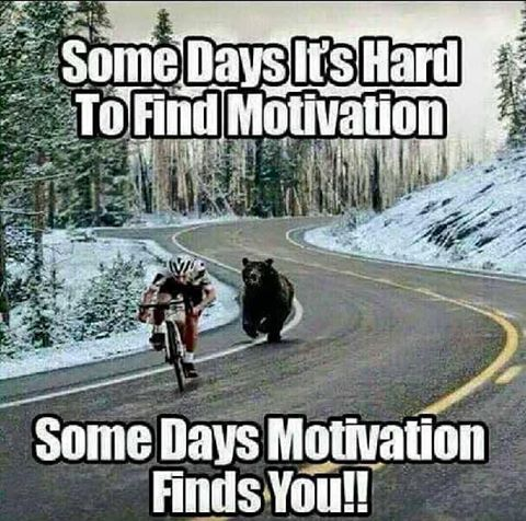 We here @vagina_n_engines know it gets hard, but stay strong friends. Motivation is on the hunt this week. Motivation Monday. Remain Inspired world 🌎🌍🌏. #motivation  #motivationalquotes  #motivationalmonday  #motivationmonday  #remaininspired  #inspiration  #push  #drive  #world  #🇻🇮 #🇯🇲 #🇺🇸 #🇬🇧 #🇵🇷 #🇻🇨 #🇩🇴 #🇩🇲 #🇧🇧 #🇹🇹 #🇻🇬 #🌎 #🌍 #🌏 #youknowhowitgo  #staystrong  #nooffdays  #Vagina&Engines #vaginanengines  Thanks goes out to the creator of this photo whomever they…