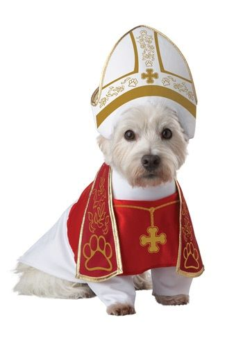 Maybe as a catholic I should frown upon this, but you have to admit he looks very papal. I even think the very down to earth Pope Francis would enjoy this.
