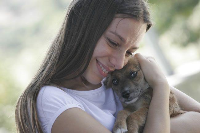Feira de Adoção de Cães e Gatos volta ao Internacional Shopping Guarulhos
