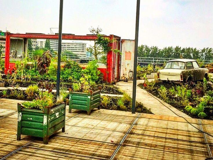 De verborgen terrassen van Amsterdam