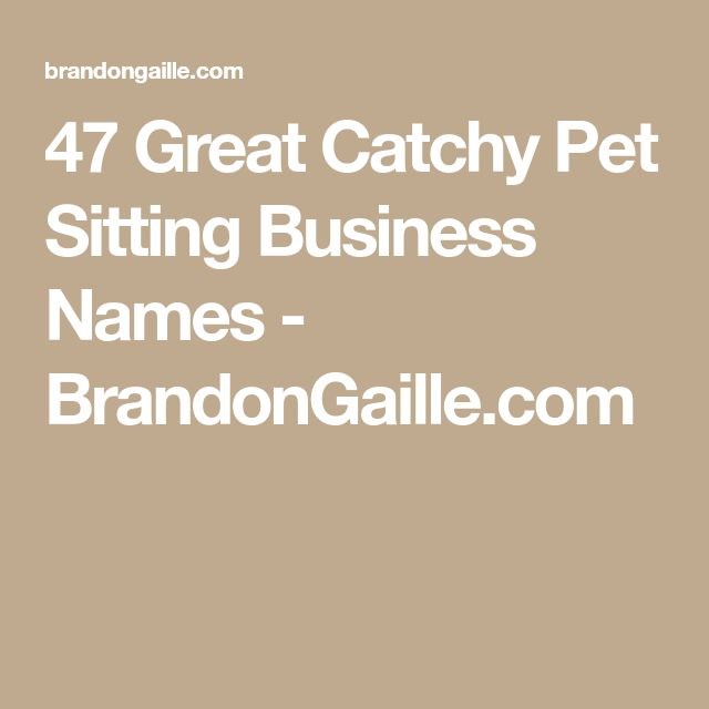 Best 25 Catchy Business Name Ideas Ideas On Pinterest