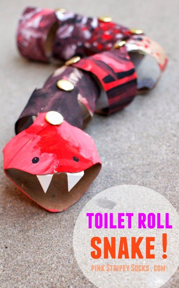 Moveable Cardboard Toilet Roll Snake Craft