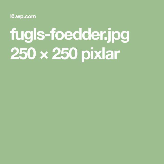 fugls-foedder.jpg 250 × 250 pixlar