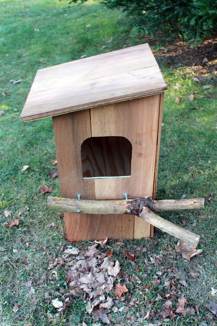 owl box plans | Building a Barred Owl Nest Box