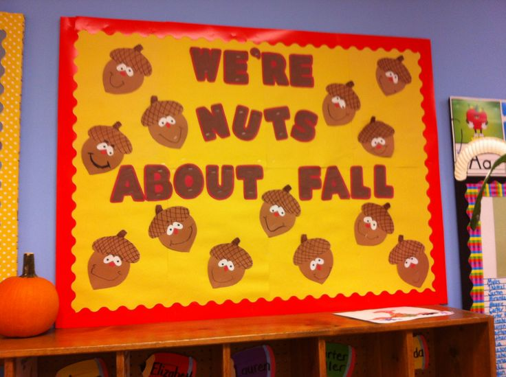 Fall bulletin board. Acorns, nuts about fall. Pre-k and elementary ed bulletin boards.