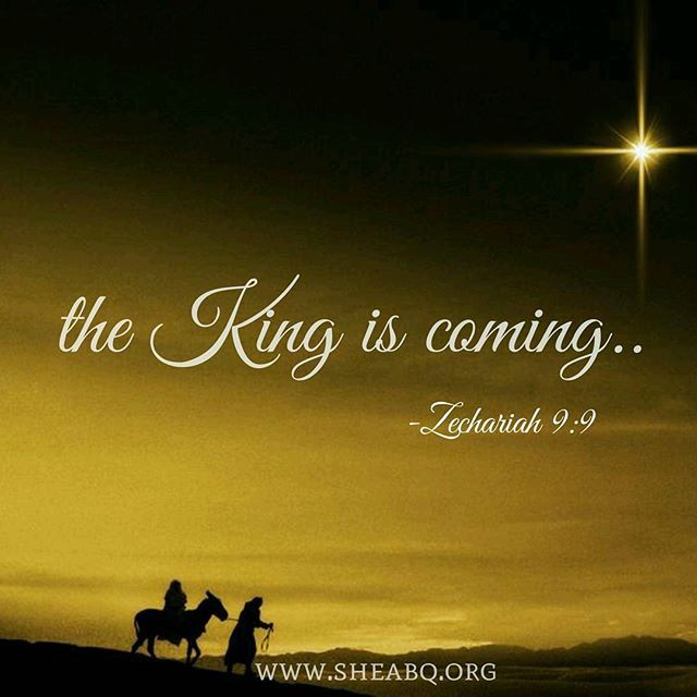 """ Rejoice greatly, O Daughter of Zion! Shout, O daughter of Jerusalem! Behold, your KING is coming to you; He is just and having salvation, lowly and riding on a donkey, a colt, the foal of a donkey."" - Zechariah 9:9."