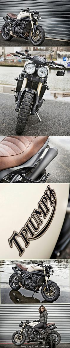Projet Speed Triple 1050 Edition Vintage - created via http://pinthemall.net