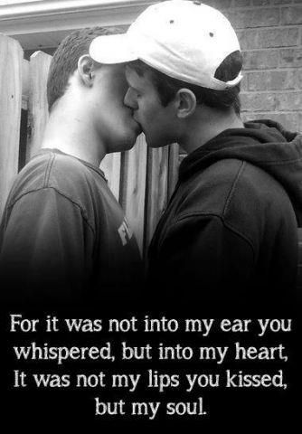 Gay Love Quotes Fascinating You Can Use Quotes From Here And Other Places To Help Build Your