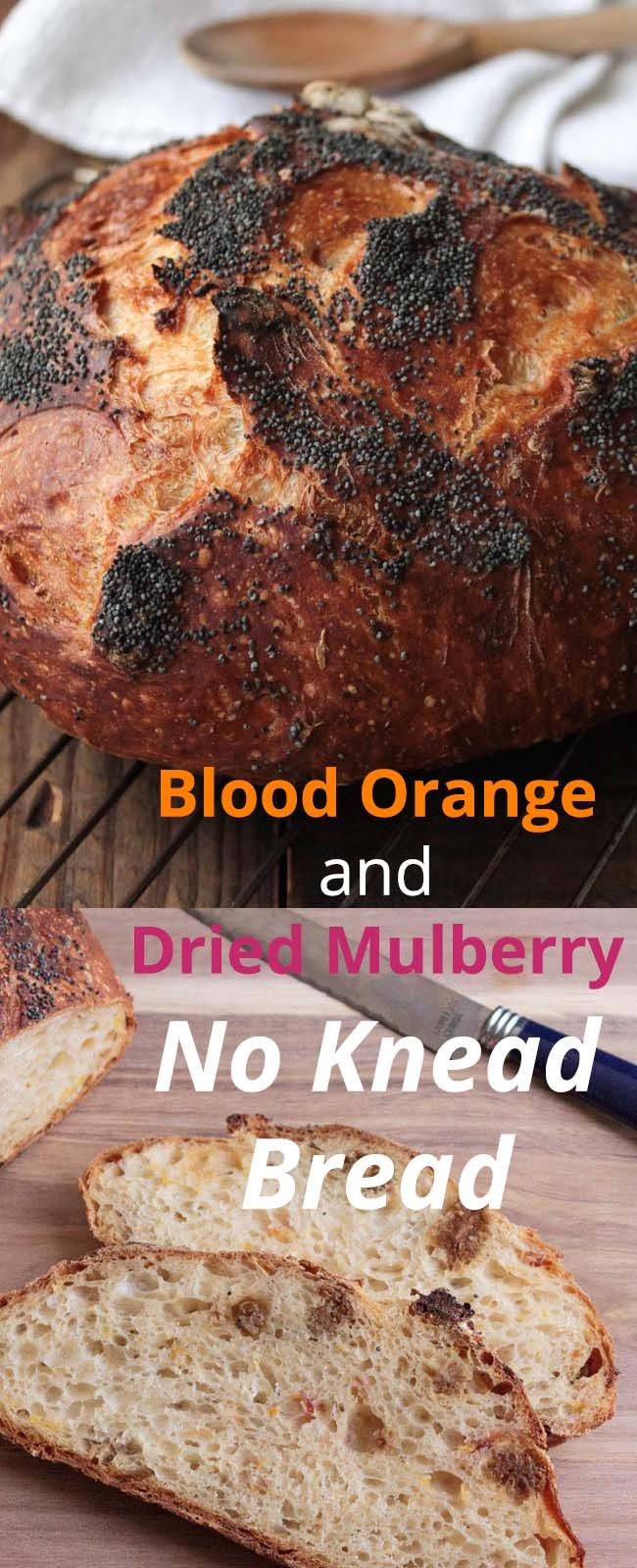 BLOOD ORANGE AND DRIED MULBERRY NO KNEAD BREAD: No knead bread is such a great way to introduce yourself to bread making. This one makes a nice fruity loaf that works well for breakfast.