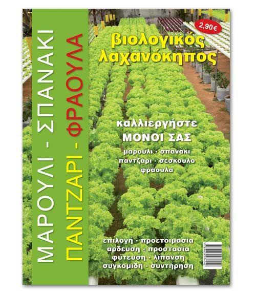 Βιολογικός λαχανόκηπος : Καλλιέργεια μαρούλι, σπανάκι και φράουλα
