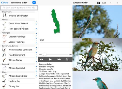 iPad Screenshot of the new Sasol eBirds of the Kruger National Park. https://itunes.apple.com/za/app/sasol-ebirds-kruger-national/id885359378?mt=8