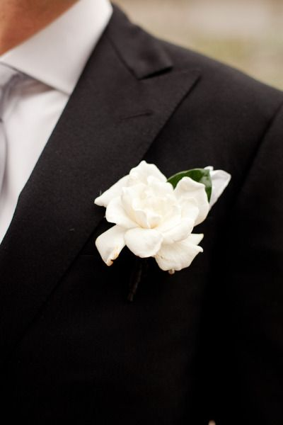 The groom's boutonniere will be a single white gardenia paired with grey dusty miller wrapped in ivory ribbon with stems showing.