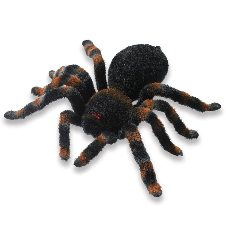 The Remote Controlled Hirsute Tarantula. Mike would shit his pants.