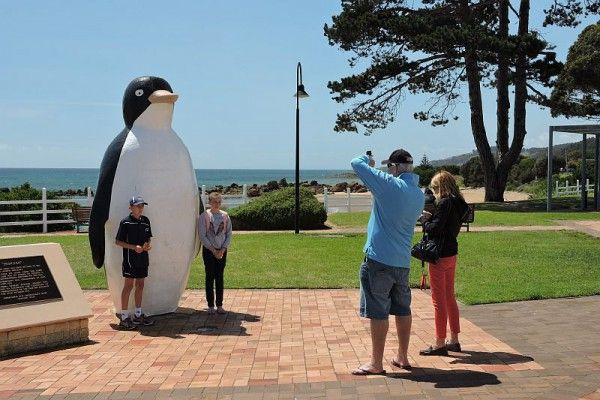 The Big #Penguin... #Tasmania, photo by Dan Fellow, article for think-tasmania.com