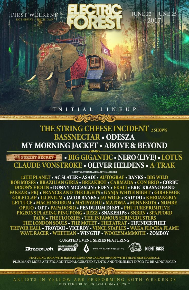 Presenting the initial lineup for Electric Forest 2017!