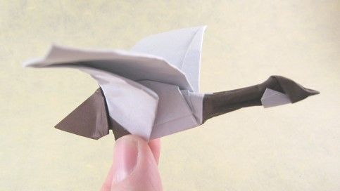 Origami Canada goose by Roman Diaz folded by Gilad Aharoni