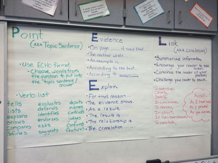 english essay structure
