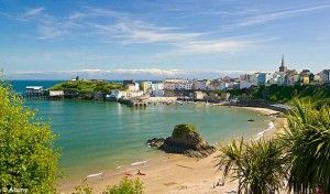 Dog Friendly Beaches Wales   Tenby Harbour Beach Best In Europe   Quality Cottages Holidays