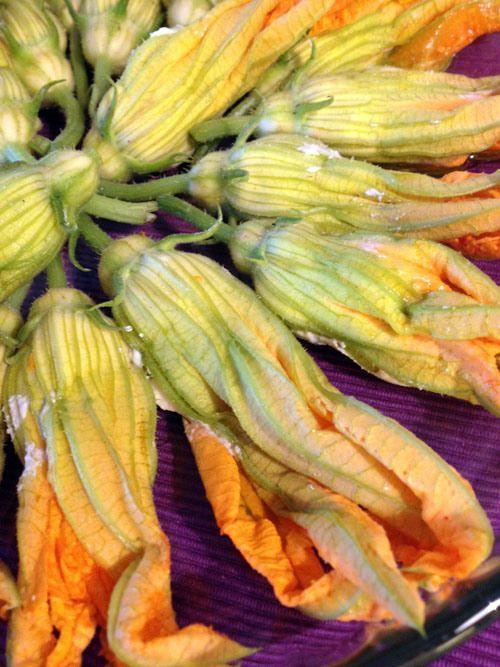 fiori-zucchina ricotta pomodoro pronti