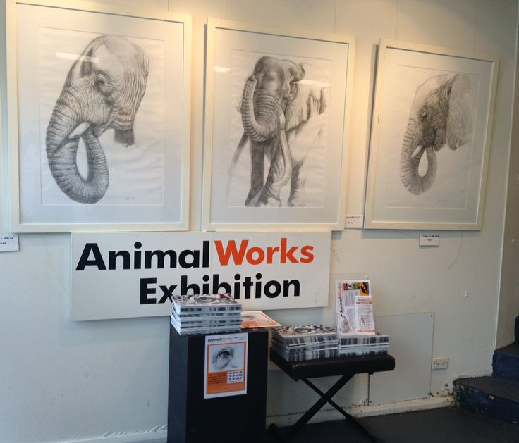 Art Exhibition at ArtSmart from 14th April til 13th May 2014.  All proceeds go to conservation.  50 Ethel St, Seaforth, NSW.