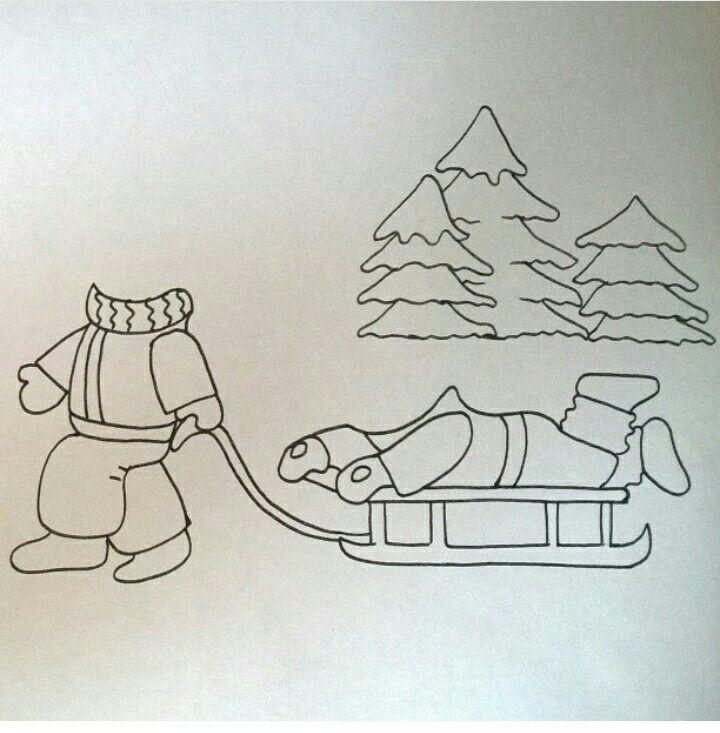 Kış ayı