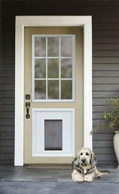 Best 25+ Door with dog door ideas on Pinterest | Dog gate with ...