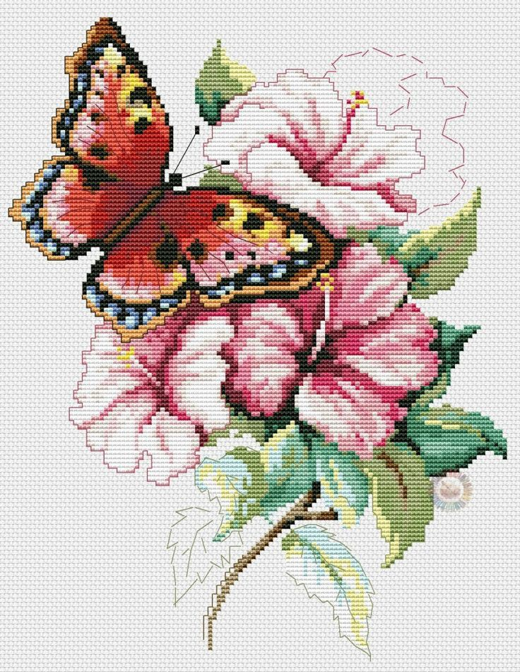 butterfly with pink flowers 2 1/5