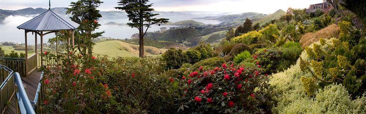 Larnach Castle, New Zealand