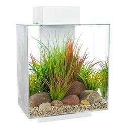 Fluval Edge 46L (12 US gal) Aquarium Set - White