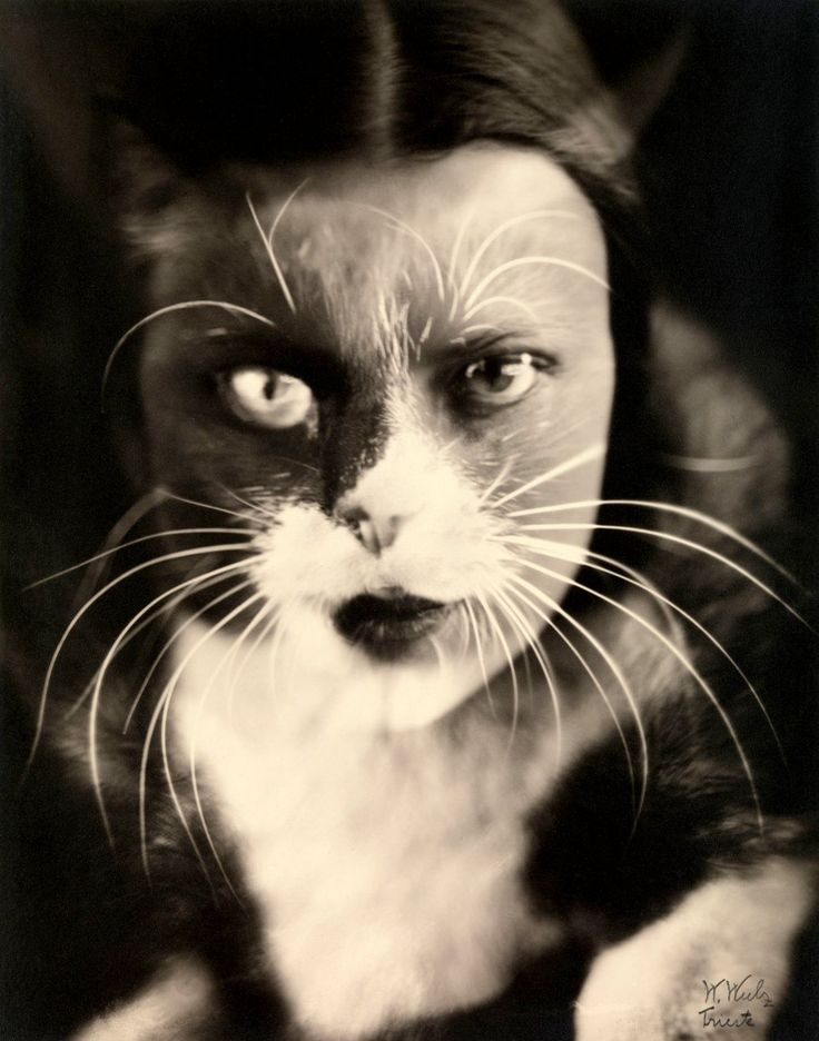 Wanda Wulz (Italian, 1903-1984)  Io + gatto (Cat + I)  1932  Gelatin silver print  The Metropolitan Museum of Art, Ford Motor Company Collection, Gift of Ford Motor Company and John C. Waddell, 1987  Alinari / Art Resource © Wanda Wulz
