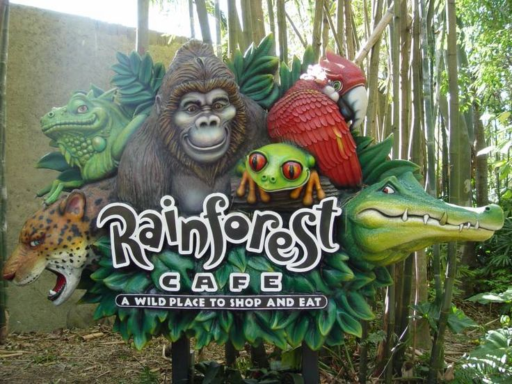 Want to eat in a real safari surrounding? at the Rain Forest Cafe, you CAN! incredible food, reasonable prices, and great entertainment for all the family! Located at Animal Kingdom out side the main gates, and also Down Town Disney.