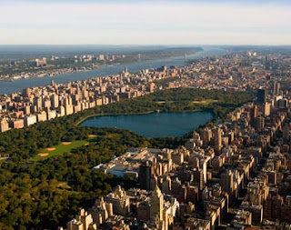 Central Park is like the calm before the storm. Chaos rules NYC but Central Park is a place to get away