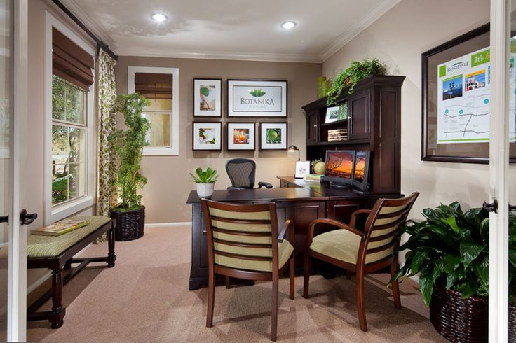 Traditional Home Office with Carpet, Silk Ming Aralia Tree, Peace Lily Plant, High ceiling, Crown molding