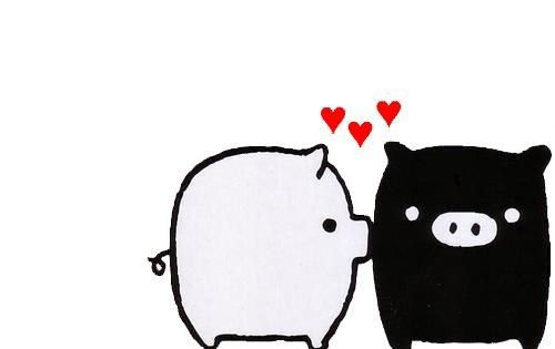 Chanchitos Love