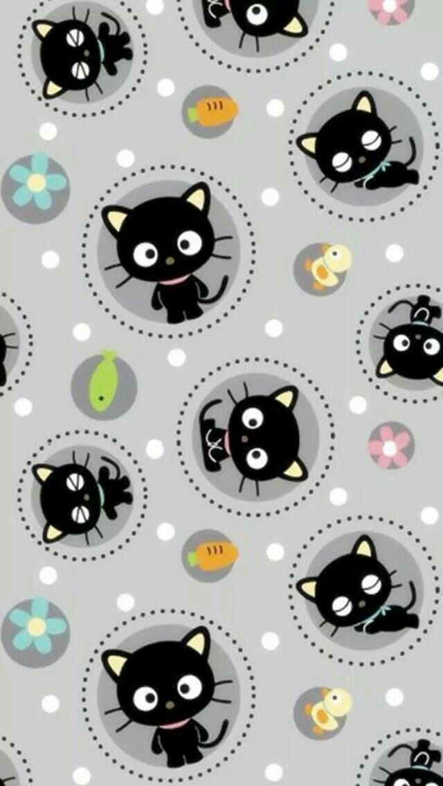 Kitty Wallpaper