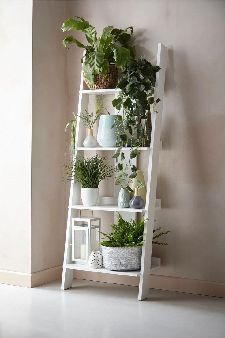 Nachste Flynn Ladder Shelf Grey Home Home Kumminen In 2020 Shelf Decor Living Room Living Room Plants Ladder Shelf Decor
