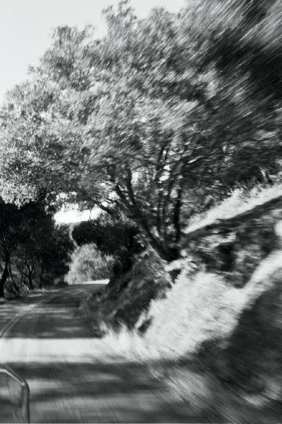 Driving through the Marin Headlands in California, USA