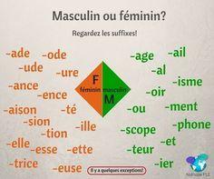 Masculin ou féminin ?