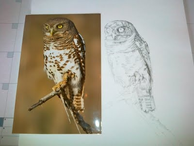 the age of a pencil drawing can vary some what - taking so long to finish!