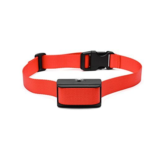 Dog Shock Collars Brands